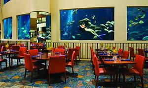 アロヒラニ リゾート ワイキキ ビーチの部屋
