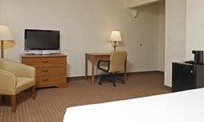 シカゴ サウス ループ ホテル