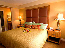 デザート ローズ リゾート Desert Rose Resort