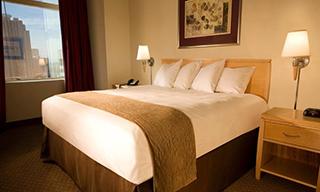 ストラトスフィアー ホテル カジノ & タワー BW プレミア コレクション ジム