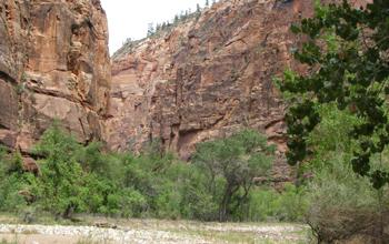 赤い岩を見ながら昼寝しました