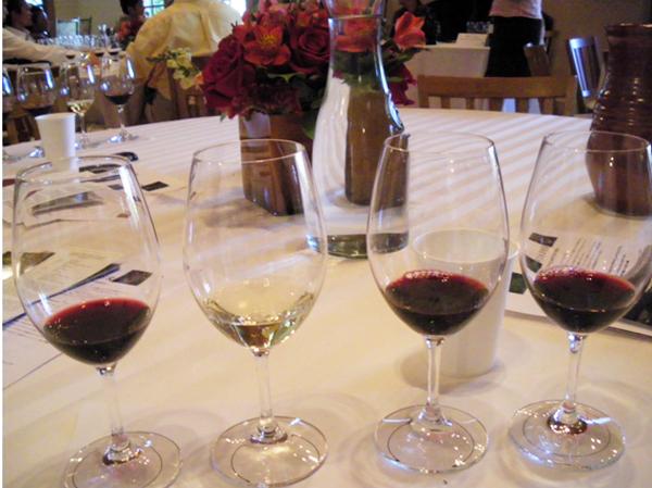 カリフォルニアワインカントリーの旅8