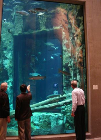 ダルースの水族館 Great Lakes Aquarium