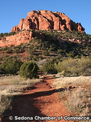 ベア トレイル マウンテン Bear Mountain Trail
