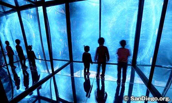 バーチ水族館 Birch Aquarium at Scripps
