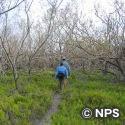 クリスチャン・ポイント・トレイル Christian Point Trail