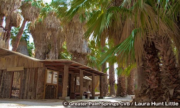 コーチェラバレー保護区 Coachella Valley Preserve