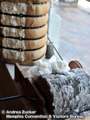 コットンミュージアム The Cotton Museum