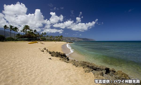ハレイワ・ビーチ・パーク Haleiwa Beach Park