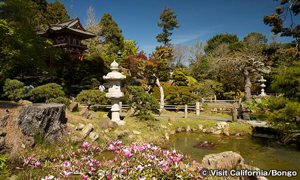 日本庭園 Japanese Tea Garden