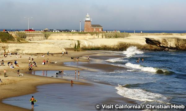 ライトハウス・フィールド・ステート・ビーチ Lighthouse Field State Beach