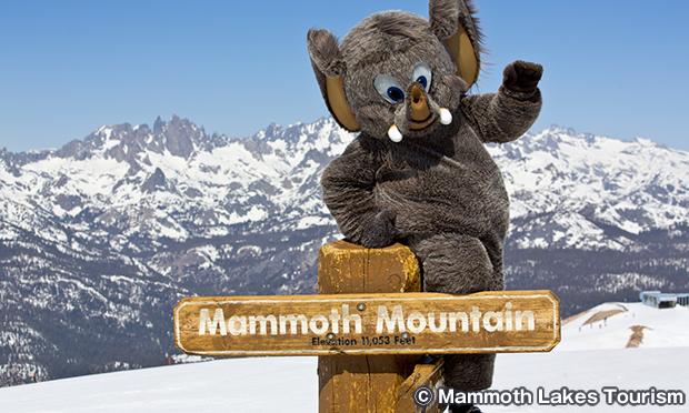 マンモス・マウンテン スキー場 Mammoth Mountain Ski Area
