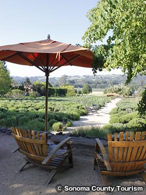 マタンザス クリーク ワイナリー Matanzas Creek Winery