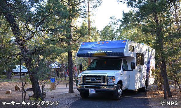 マーサー キャンプグランド Mather Campground