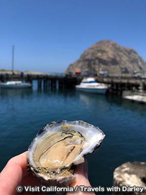 モロ・ベイ ハーバー Morro Bay Harbor