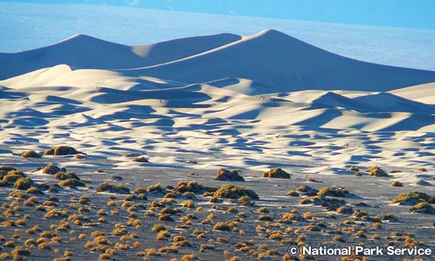 モスキートフラット砂丘