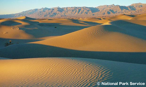モスキートフラット砂丘 Mesquite Flat Dunes