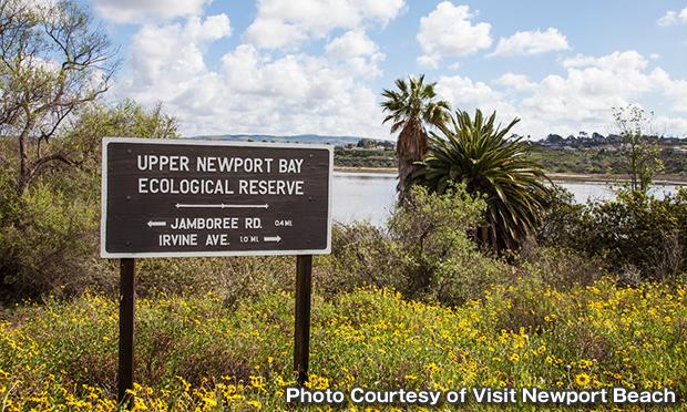 アッパー・ニューポート・ベイ・エコロジカル・リザーブ Upper Newport Bay Ecological Reserve