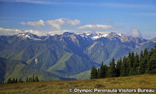 オリンピック国立公園 Olympic National Park