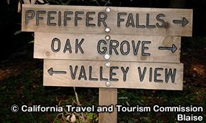 ファイファー・ビッグサー州立公園 Pfeiffer Big Sur State Park