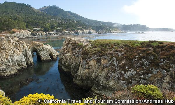 ポイント・ロボス州立保護区 Point Lobos State Reserve