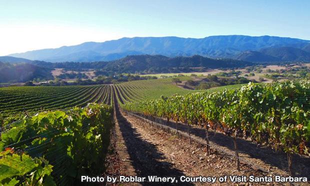 ロブラー・ワイナリー Roblar Winery