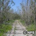 ロウディ・ベンド・トレイル Rowdy Bend Trail