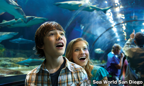 シーワールド サンディエゴ Sea World San Diego