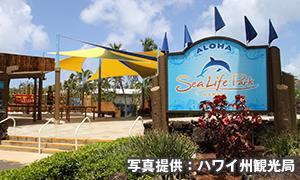 シーライフパーク・ハワイ Sea Life Park Hawaii