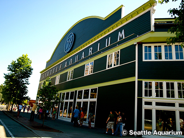 シアトル水族館 Seattle Aquarium
