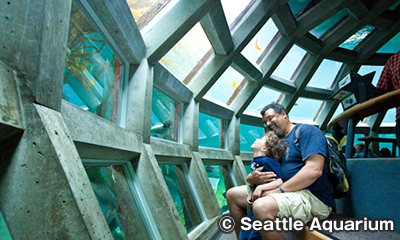 シアトル水族館 Seattle Aquarium Underwater Dome