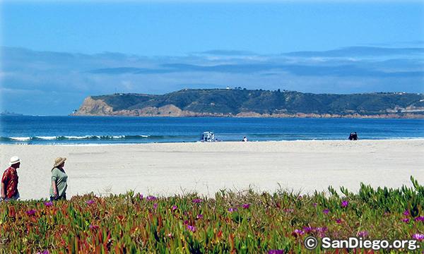 シルバー・ストランド・ステート・ビーチ Silver Strand State Beach