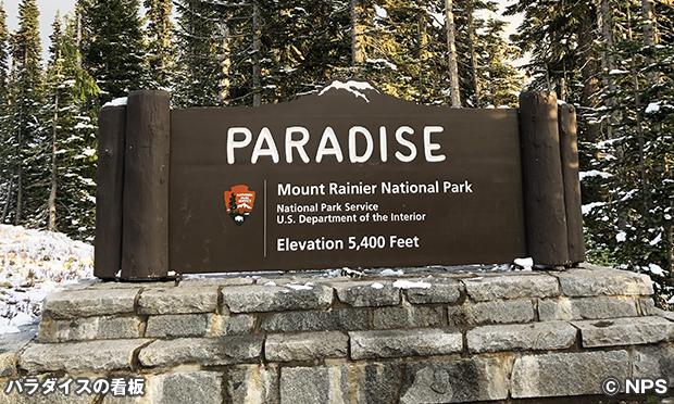 パラダイス エリア Paradise