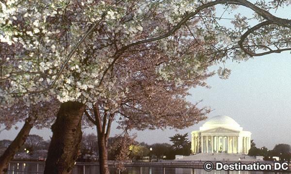 トーマス ジェファーソン記念館 Thomas Jefferson Memorial