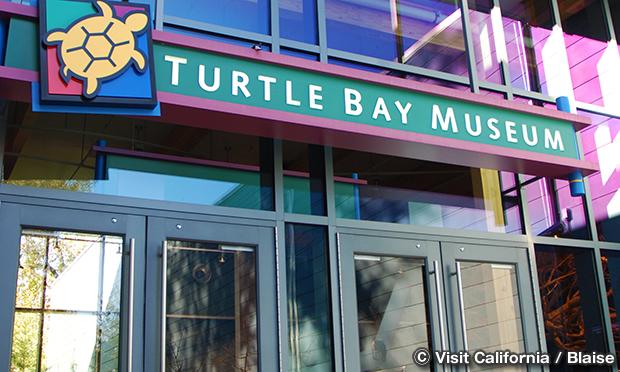 タートル・ベイ・エクスプロレーション・パーク Turtle Bay Exploration Park