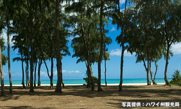 ワイマナロ・ビーチ・パーク Waimanalo Beach Park