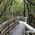 ウェスト・レイク・トレイル West Lake Trail
