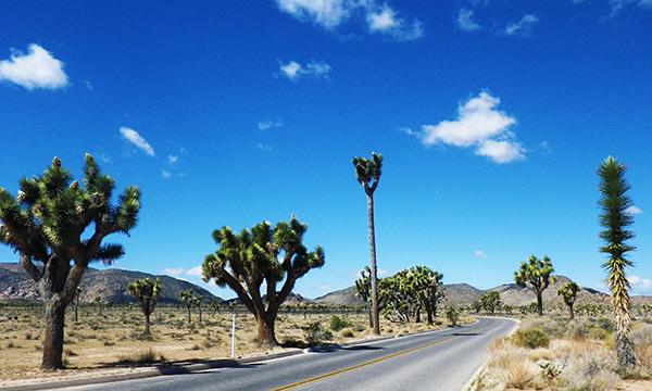 南カリフォルニア 女子旅、母娘旅、アウトドアの旅 2016