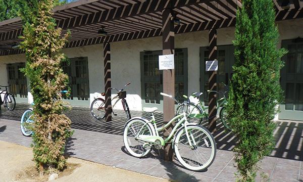 ラ カサ デル ゾッロ リゾート & スパ La Casa del Zorro Resort & Spa