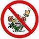 アンテロープ・バレー・カリフォルニア・ポピー保護区の規則