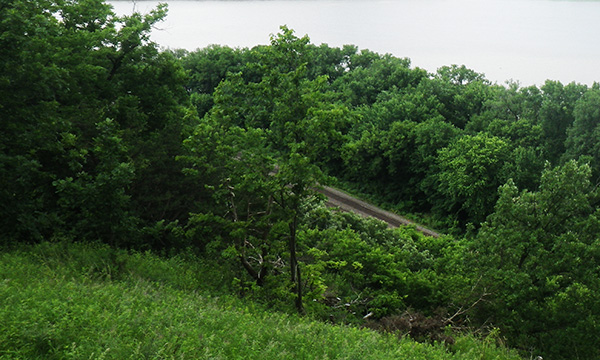 ミシシッピ・パリセーズ州立公園