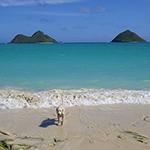 ラニカイ・ビーチ Lanikai Beach 天国の海