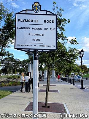 プリマス・ロック Plymouth Rock
