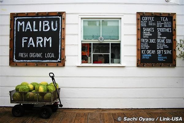 マリブピアの MALIBU FARM