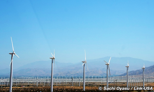 風車群れが延々と続く60号線