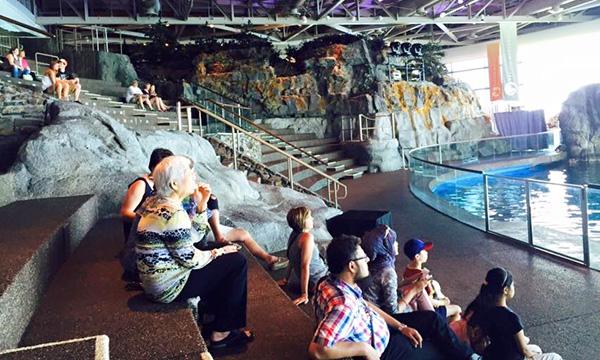 シェッド水族館 Shedd Aquarium
