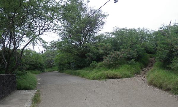 パーキングからココクレーター レールウェイ トレイル まで