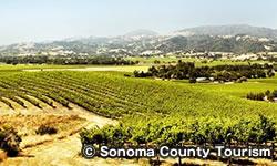 ノーザン ソノマ Northern Sonoma