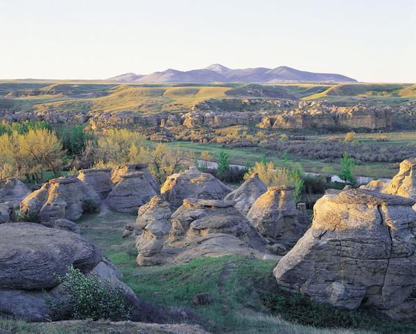 アルバータ州立恐竜公園 | Link-...